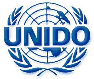 unido-india